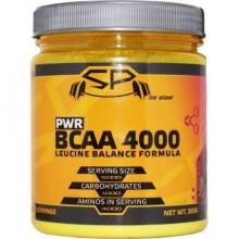SteelPower BCAA Leucine balance 300g