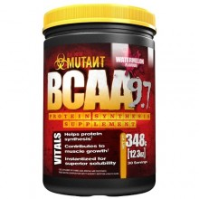 Mutant BCAA 348g